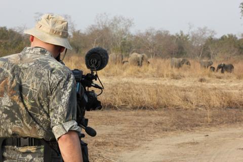 Grandes chasses au Burkina Faso