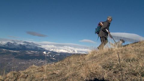 La perdrix grise des Pyrenees