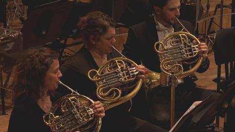 Prokofiev : Pierre et le Loup (l'Orchestre National d'Ile de France)