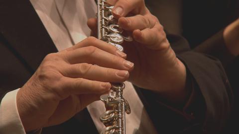 Engelbert Humperdinck : prÉlude de Hänsel et Gretel (l'Orchestre National d'Ile de France)