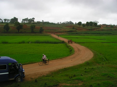 MADAGASCAR AUTREMENT : VAS VIS VALI