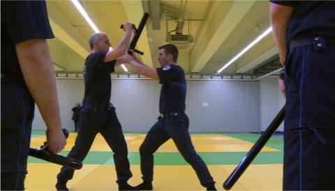 Alcool, chauffard, incivilités : les policiers et gendarmes de l'Est en action