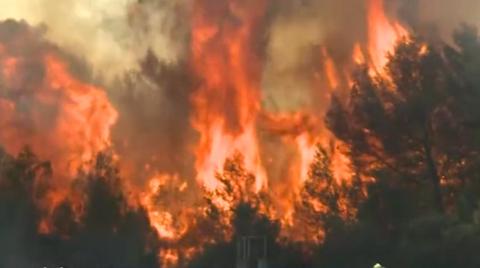 Incendies, accidents, malaises : les pompiers en action