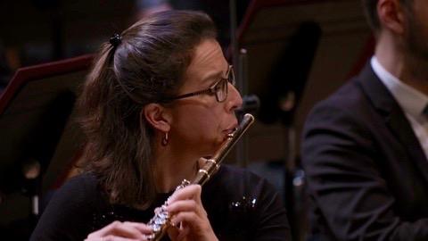 Les Saisons de Haydn : orchestre de chambre de Paris, Accentus